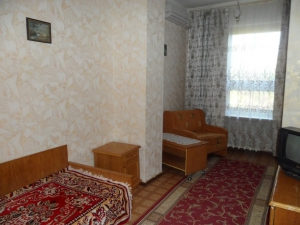 1 местный 1-комнатный номер «Стандарт» в корпусе №1