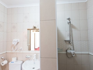 1-комнатный 2-местный «Люкс Романова»